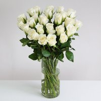 24 Fairtrade White Roses - flowers - Flower Bouquet Gifts
