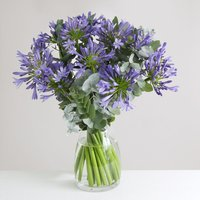 Large Organic Agapanthus Bouquet - flowers - Flower Bouquet Gifts