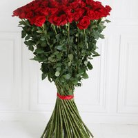 150 of The World's Largest Roses - flowers - Arena Flowers Gifts