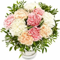 Pastel Carnations - flowers - Arena Flowers Gifts