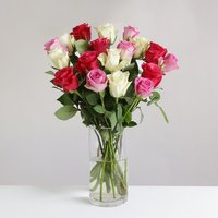 18 Mixed Roses - flowers - Arena Flowers Gifts