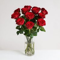 A Dozen Burgundy Roses - flowers - Flower Bouquet Gifts