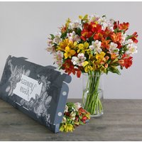 Letterbox Mixed Alstroemeria - flowers - Flower Bouquet Gifts