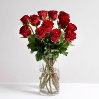 A Dozen Classic Red Roses - flowers - Arena Flowers Gifts