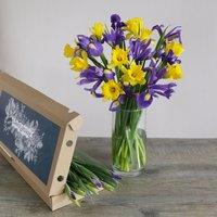 Letterbox Spring Sunshine - flowers - Arena Flowers Gifts
