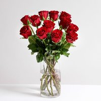 Dozen Red Fairtrade Roses - flowers - Flower Bouquet Gifts