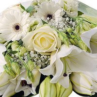 White Gift Wrap - flowers - Flower Bouquet Gifts