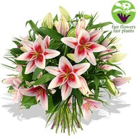 Pink Lily Bouquet - flowers - Pink Gifts