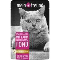 Mein Freund Katze Genuss Happen mit Lamm in herzhaftem Fond