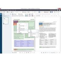 ABBYY FineReader Corporate Edition - (v. 14) - Aktualisierungssicherheit / Pro Sitz Lizenz (1 Jahr) - 1 Workstation - ABBYY Corporate plus License Program - 11-25 Lizenzen - ESD - Win - Multilingual