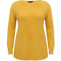 Ladies Plus size ribbed knit crew neck long sleeve jumper  - Ochre