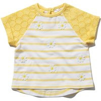 Baby girl cotton rich stripe patter short sleeve broderie anglaise daisy design raglan t-shirt  - Ye