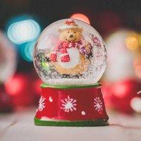'Christmas Snow Globe