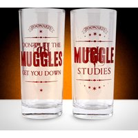 Harry Potter Set Of 2 Glasses - Muggles