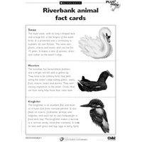 Riverbank fact cards