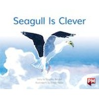 PM Yellow: Seagull is Clever (PM Storybooks) Level 8 x 6