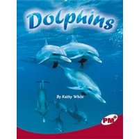 PM Ruby: Dolphins (PM Plus Non-fiction) levels 27, 28 x 6