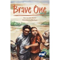 PM Sapphire: Brave One (PM Plus Chapter Books) Level 29