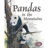 PM Gold: Pandas in the Mountains (PM Storybooks) Level 22
