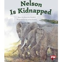 PM Silver: Nelson is Kidnapped (PM Storybooks) Level 23
