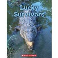 Connectors Gold: Lucky Survivors x 6