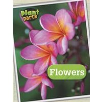 Plant Parts: Flowers