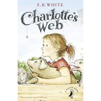 Charlottes Web x 30