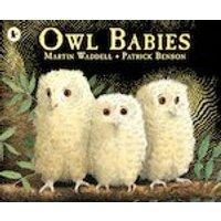 Owl Babies x 30