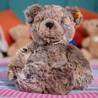 Steiff Soft Cuddly Terry The Bear - Cuddly Gifts