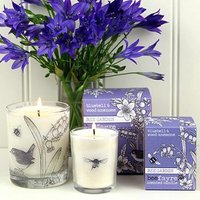 Bee Garden Bluebell & Wood Anemone Candle - Bee Gifts