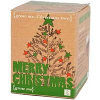 Grow Your Own Christmas Tree - Grow Your Own Gifts
