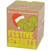 Grow Your Own Sprouts - Grow Your Own Gifts