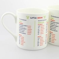 Latin Nouns Bone China Mug