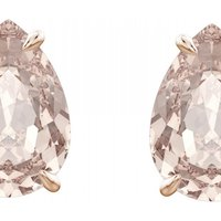 Image of Ladies Swarovski Jewellery Mix Earrings 5427951