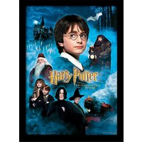 Harry Potter - Philosophers Stone Framed 30 x 40cm Print