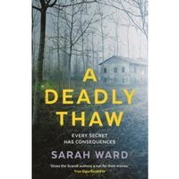 A Deadly Thaw (DC Childs mystery) Hardcover