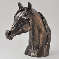 Arab Stallion Head by Harriet Glen Cold Cast Bronze Sculpture
