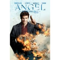 Angel: After the Fall Volume 4
