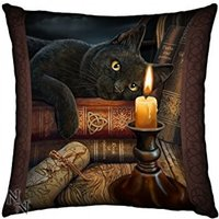 Witching Hour Black Cat Soft Feel Cushion