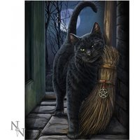 A Brush With Magick Cat 3D Picture