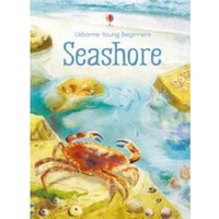 Seashore by Emily Bone (Hardback, 2017)