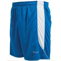 Precision Real Shorts 30-32 inch Royal/White