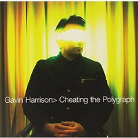 Gavin Harrison - Cheating The Polygraph Vinyl