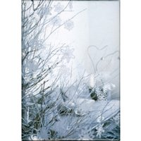 White Christmas Classic Notecards