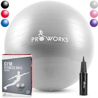 Proworks Gym Fitness Ball (55cm) - Silver