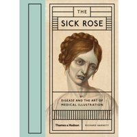 Sick Rose: Disease in the Golden Age of Medical Illustration: Medical Illustration by Richard Barnett (Hardback, 2014)