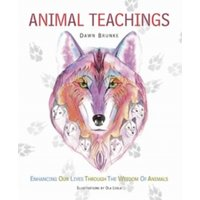 Animal Teachings : Enhancing Our Lives Through the Wisdom of Animals