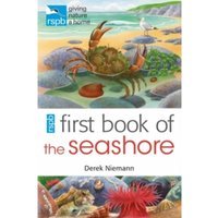 RSPB First Book of the Seashore by Derek Niemann (Paperback, 2012)