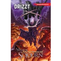 Dungeons & Dragons The Legend of Drizzt Volume 3 Sojourn