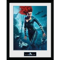 Aquaman Mera Collector Print